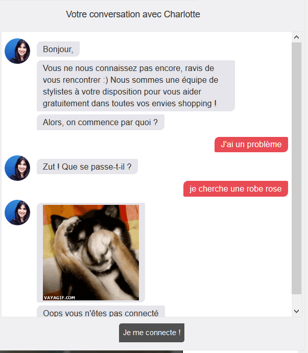 Exemple chatbot mode
