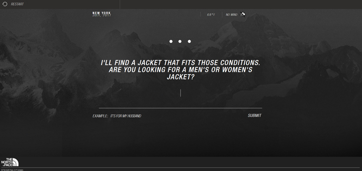 AI ecommerce north face