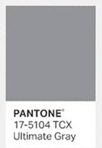 Ultimate grey couleur annee 2021
